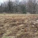 Pula, Vodnjan, zemljište 1320m2 sa građevinskom dozvolom!