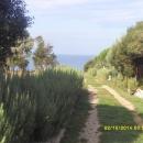 Peroj samostojeća vikendica, 80 metara od mora