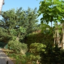 stan Štinjan novo namješteni apartman s vrtom